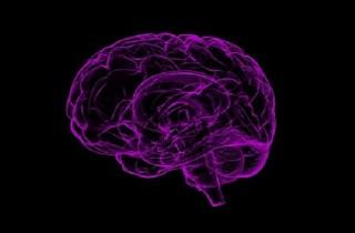 Corteccia Prefrontale Mediale